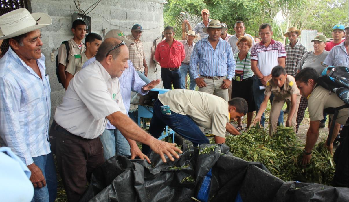 IDIAP capacita a productores en la elaboración de silos de maíz