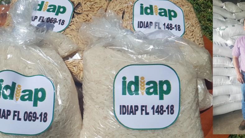 Resaltan la importancia del uso de semillas certificadas