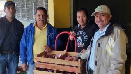 10,500 minitubérculos de papa recibe el Productor Bladimiro Miranda