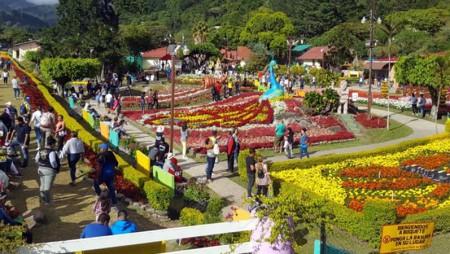 Conozca los pabellones del sector agropecuario en la Feria de las Flores y el Café