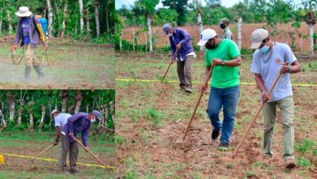 Productores de Azuero instalan ensayos de maíz